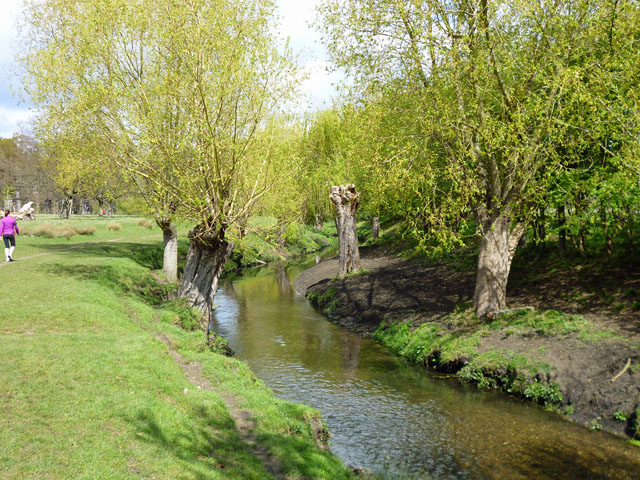 Beverley Brook, Richmond Park