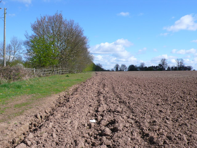 Fields at Cubbington Heath