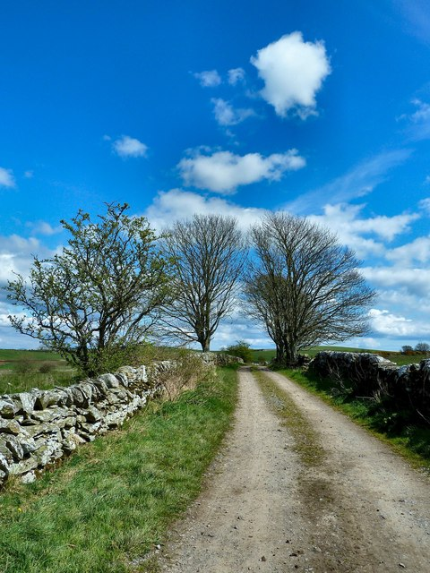 Footpath to the Old Place of Monreith