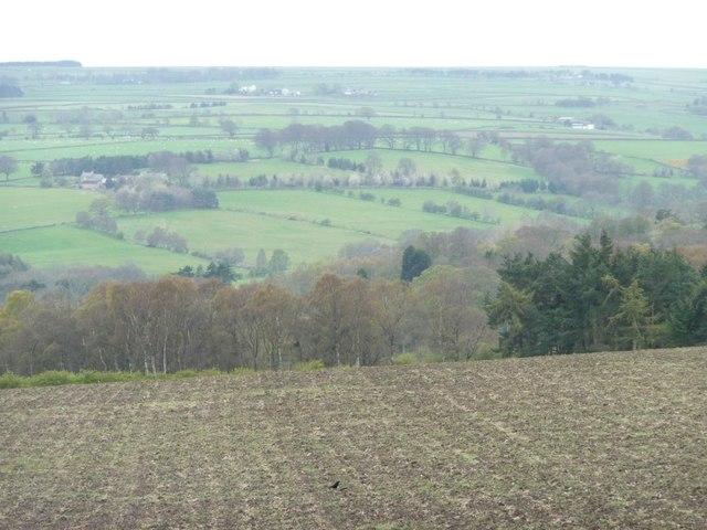 Bare hillside field
