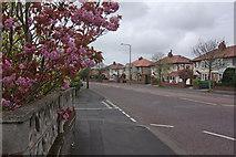 SD3727 : Preston Road, Lytham by Stephen McKay