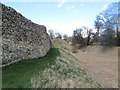 SP9908 : The Eastern Curtain Wall and Moat at Berkhamsted Castle by Chris Reynolds