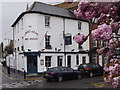 TQ1364 : Albert Arms, Esher by Colin Smith