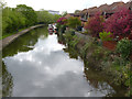 SK5538 : Nottingham Canal from Lenton Lane by Alan Murray-Rust