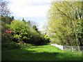 SJ3776 : Rivacre Valley by Sue Adair