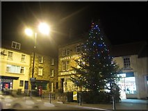 NT9953 : Berwick upon Tweed Christmas Tree by Graham Robson