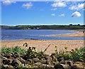 G0940 : Beach near Ballycastle by Alex McGregor