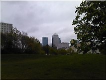 TQ3680 : View of Canary Wharf from Ropemaker's Field by Robert Lamb