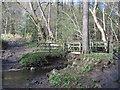 SE6891 : Footbridge  and  Ford  at  Low  Lane  Wath by Martin Dawes