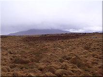 NN4060 : Rough grassland north of Allt an Ime on Rannoch Moor by ian shiell