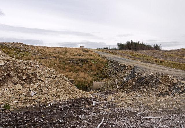 Forestry road crossing the Nant y Graig-wen
