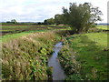 ST5623 : River Cam by Nigel Mykura