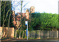 SP0681 : Grove Road Kings Heath from site of entrance to Grove Terrace by Roy Hughes