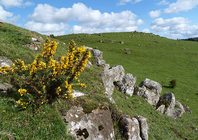Castle Hill at Ancrum