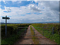 NS4833 : Farm Track to Crossroads by wfmillar