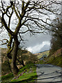 SN8453 : The mountain road  north-west of Abergwesyn, Powys by Roger  Kidd
