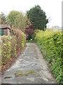 SE1228 : Footpath - Greenacres Grove by Betty Longbottom