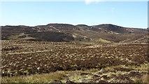 NR6107 : Boggy moorland above Borgadale by Richard Webb