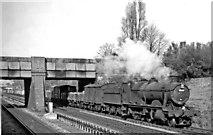 TQ1780 : Up GW main line freight near West Ealing by Ben Brooksbank