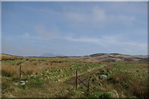 NR8935 : Track east of Cnocan Cuallaich by Leslie Barrie