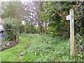 TM2750 : Bridleway to the A1152 Woods Lane by Geographer