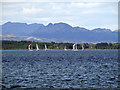 NS2976 : Yachts off Rosneath Peninsula by Thomas Nugent