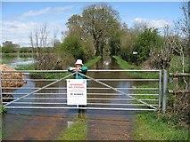 SY9898 : Flooded bridleway near Bear Mead by John Palmer