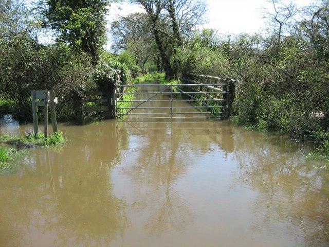 Flooded field gate