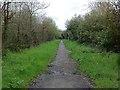 TQ1651 : Denbies Drive towards Denbies by Hugh Craddock