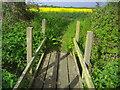 SU6963 : Bridge on public footpath off Park Lane by David Howard