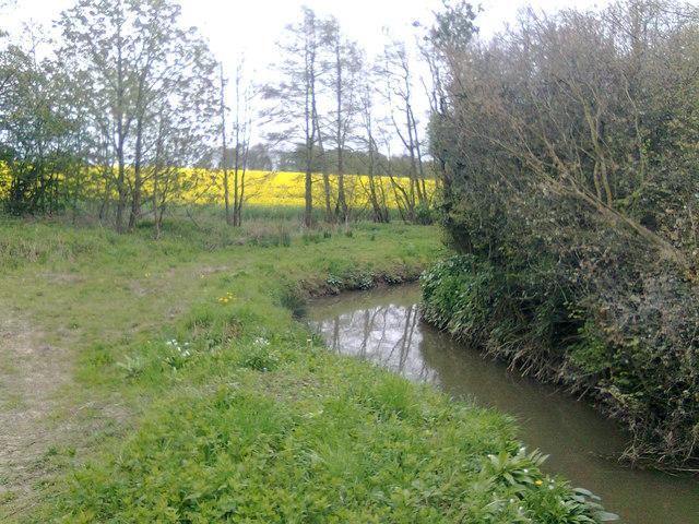 Drainage at Great Wood