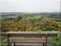 NZ0559 : A seat with a view near New Ridley by Ian S