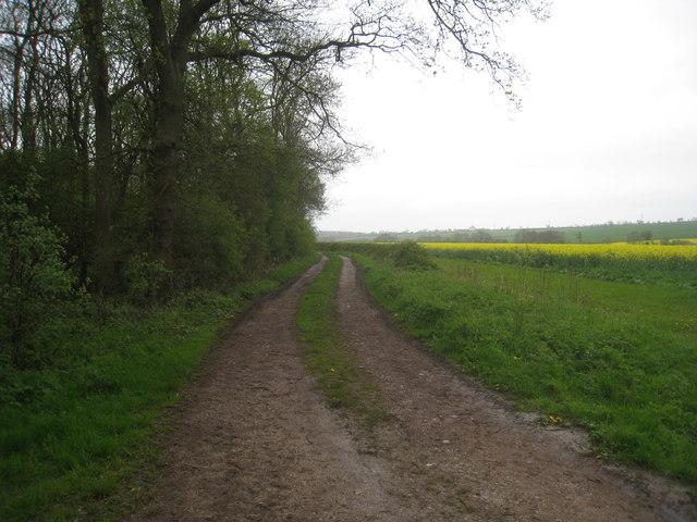 Robin Hood Lane alongside Roe Wood
