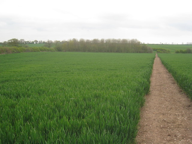Footpath to Maplebeck