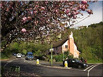SX9065 : Foot of Penny's Hill, Torquay by Derek Harper