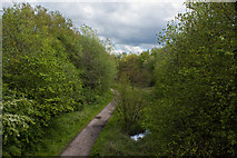 SJ7993 : The Trans Pennine Trail as it clears the underpass by Ian Greig