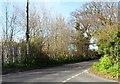 TG4904 : Mill Road, Bradwell, Suffolk by nick macneill