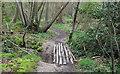 TM1830 : Woodland bridge by Roger Jones