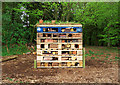 J4967 : 'Bug hotel', Castle Espie by Rossographer