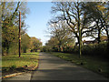 SP1268 : Gentlemans Lane tips downhill by Robin Stott