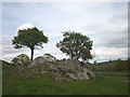 SD4692 : Trees on outcrop by the footpath to The Broom, Underbarrow by Karl and Ali