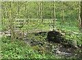 SE0855 : Footbridge over Pickles Beck by Pauline E