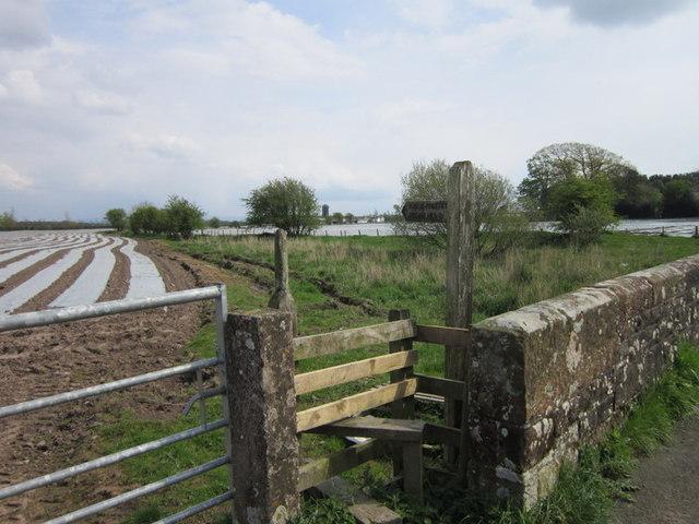 The path to Brisco Hill Bridge