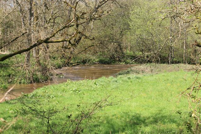 The River Carey at Bolford Bridge