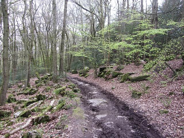 Old road, Cleddon