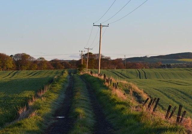 Coalfarm to Waterless farm road