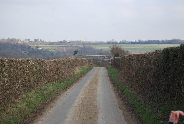 High Woods Lane by N Chadwick
