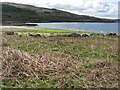 NM4724 : Traigh Bhan on Loch Scridain by M J Richardson