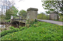 SJ5509 : Bridge over the River Tern at  Attingham Park by Mick Malpass