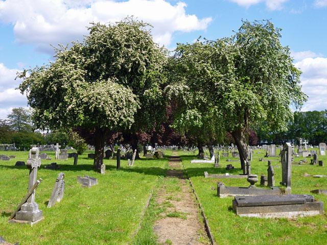 Path, Streatham Cemetery